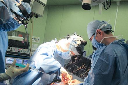心臓と血管の外科的治療・手術を担当する心臓血管外科