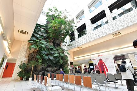 吹き抜け構造で開放感のあるエントランス。大きな岩と植物が特徴的