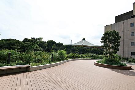 豊かな緑を間近に感じられる屋外テラスは、段差を使った歩行訓練にも利用される